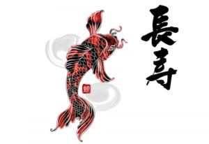 鯉の長寿のイメージ