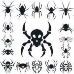蜘蛛のタトゥー