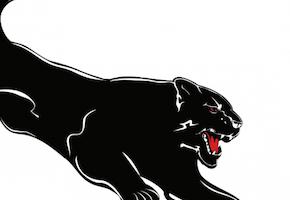 黒豹のデザイン