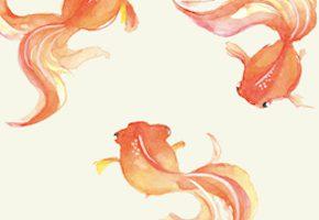 3匹の金魚