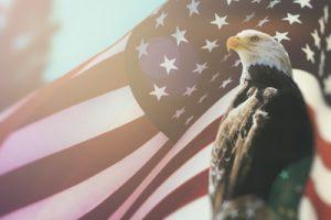 イーグルとアメリカの国旗