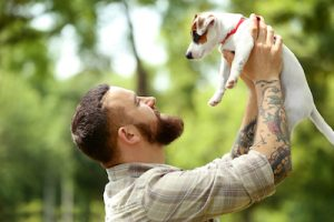 犬との友情のイメージ