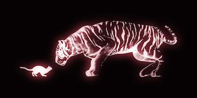 虎の強さのイメージ