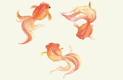 金魚のタトゥーが持つ意味とは?※デザイン画像あり