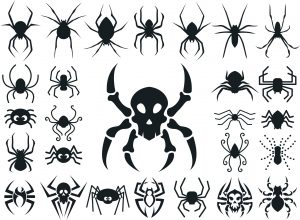 蜘蛛(スパイダー)のタトゥーの意味とは?クモの巣の解説もあり!