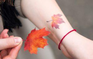 紅葉(もみじ)のタトゥーの意味とは?イチョウ・カエデとの違いも解説