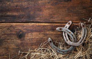 ウマの蹄鉄の写真