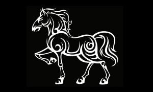 馬(ウマ)のタトゥーの意味とは?蹄鉄や白馬の意味も解説!