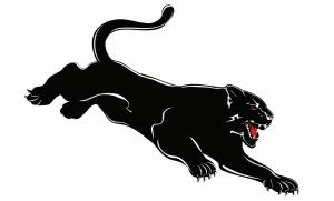 パンサー(黒豹)のタトゥーの意味とは?※デザイン画像あり