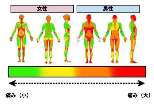 タトゥーの痛みチャート図